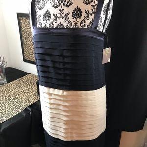 NWT. Taylor Blue and White Dress